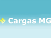 Cargas Mg